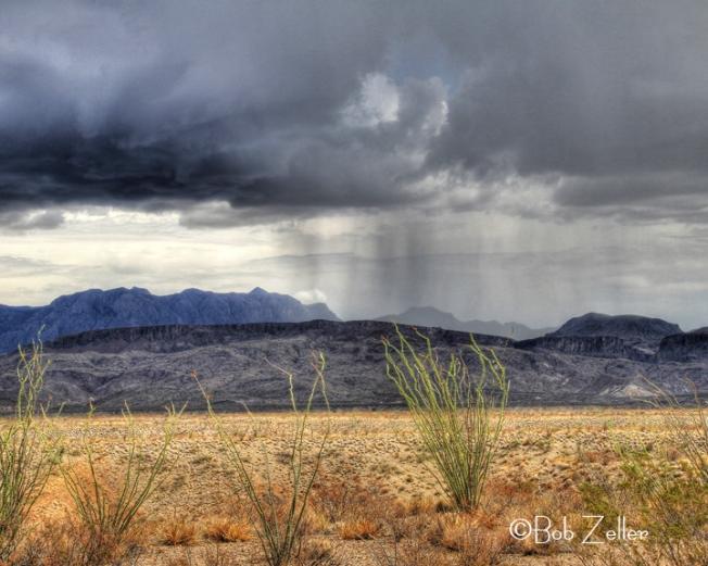 IMG_7953_net-desert-storm-bob-zeller
