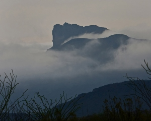 Mountains in the Mist