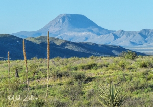 Sotol and Santiago Peak - Big Bend National Park