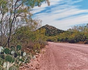 Road to Nipple Peak