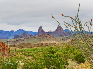 Ocotillo and Mule Ears Peak.