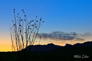Sunrise over the Chisos Mountains, Big Bend National Park.